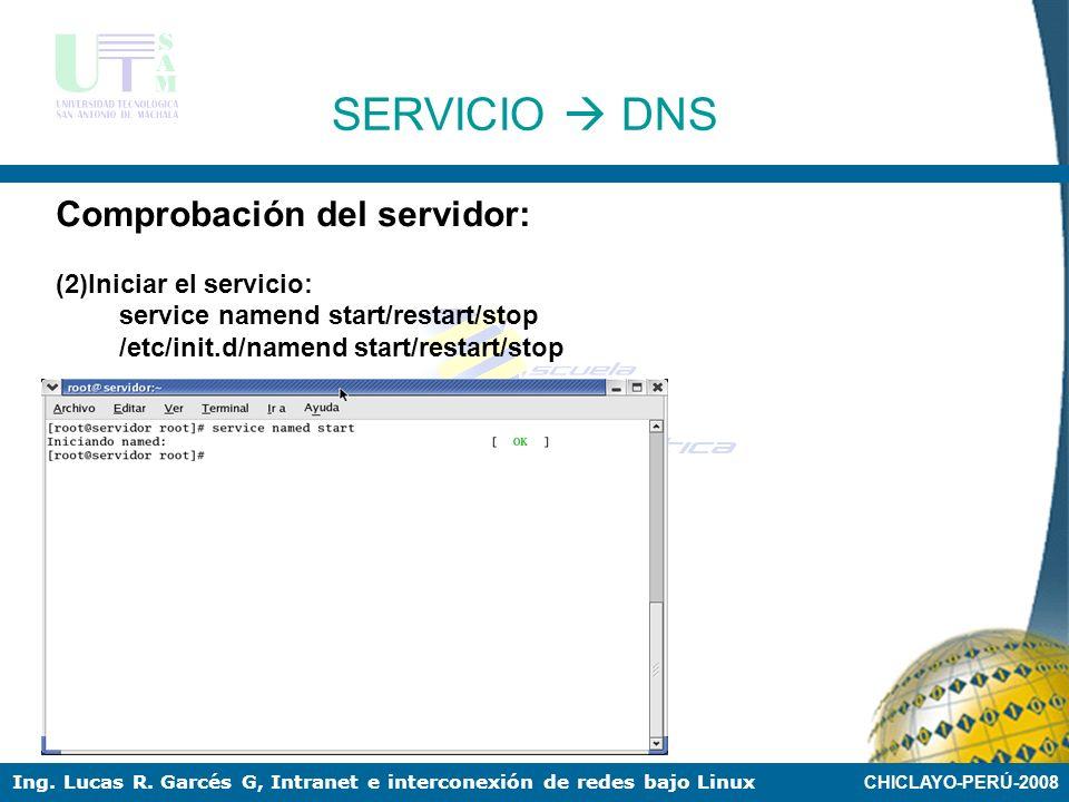 SERVICIO  DNS Comprobación del servidor: (2)Iniciar el servicio: