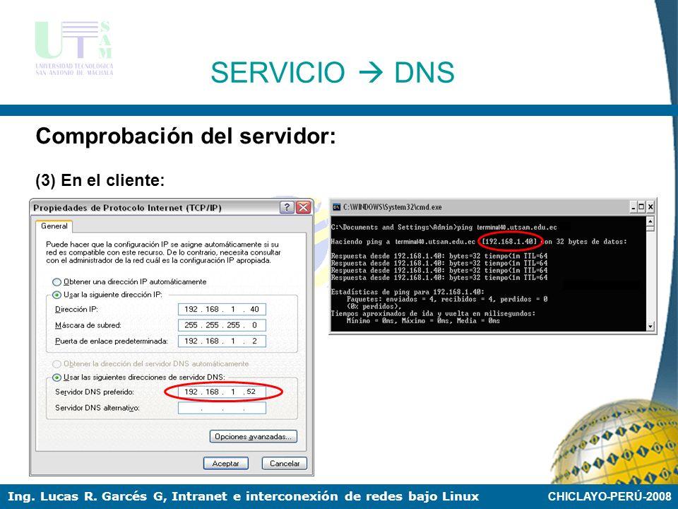 SERVICIO  DNS Comprobación del servidor: (3) En el cliente: