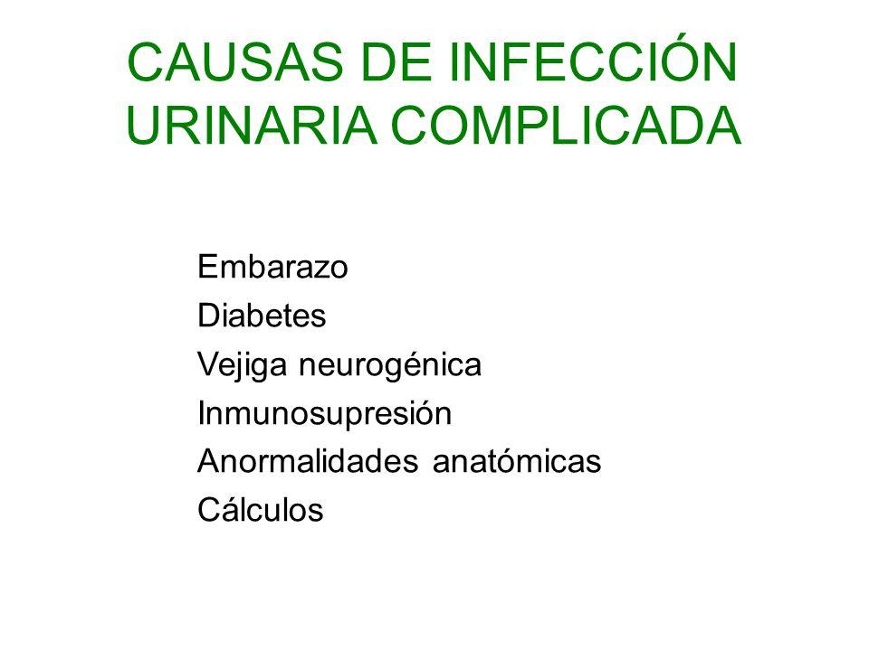CAUSAS DE INFECCIÓN URINARIA COMPLICADA
