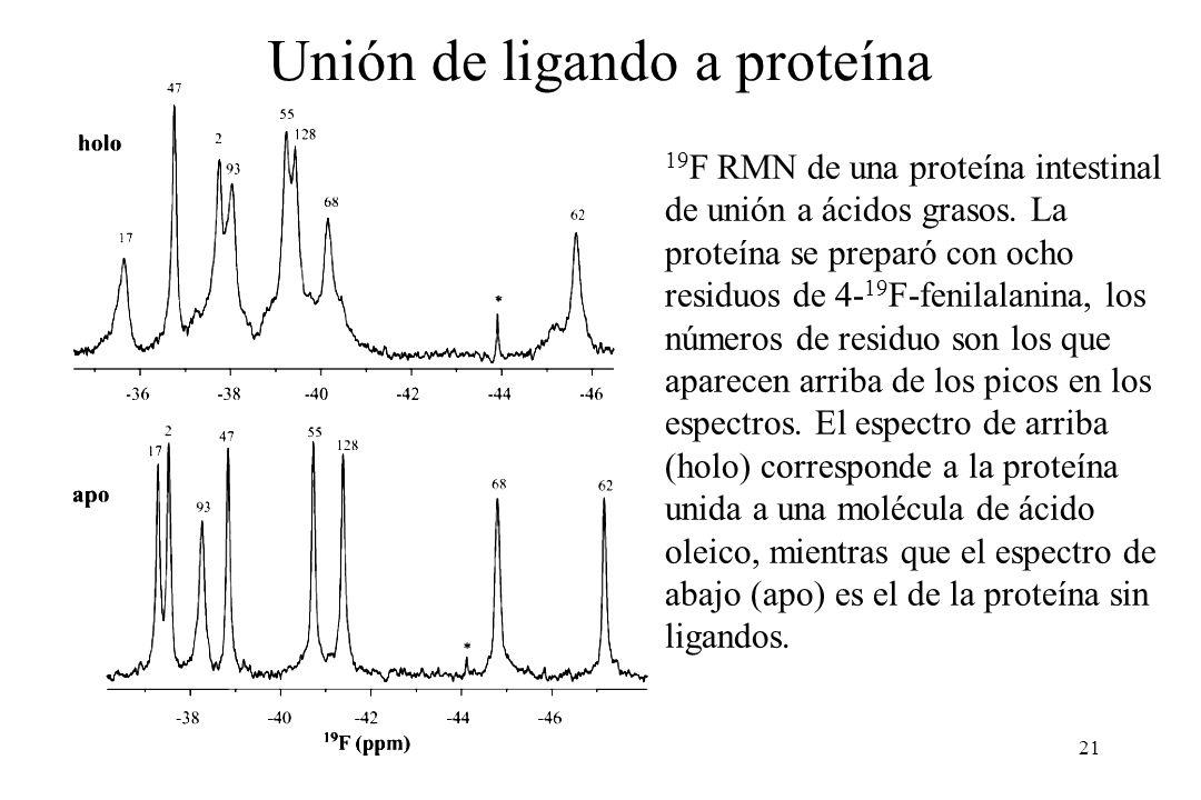 Unión de ligando a proteína