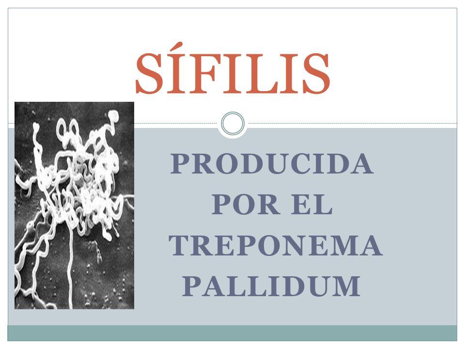 Producida por el Treponema Pallidum