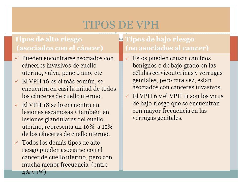 TIPOS DE VPH Tipos de alto riesgo (asociados con el cáncer)