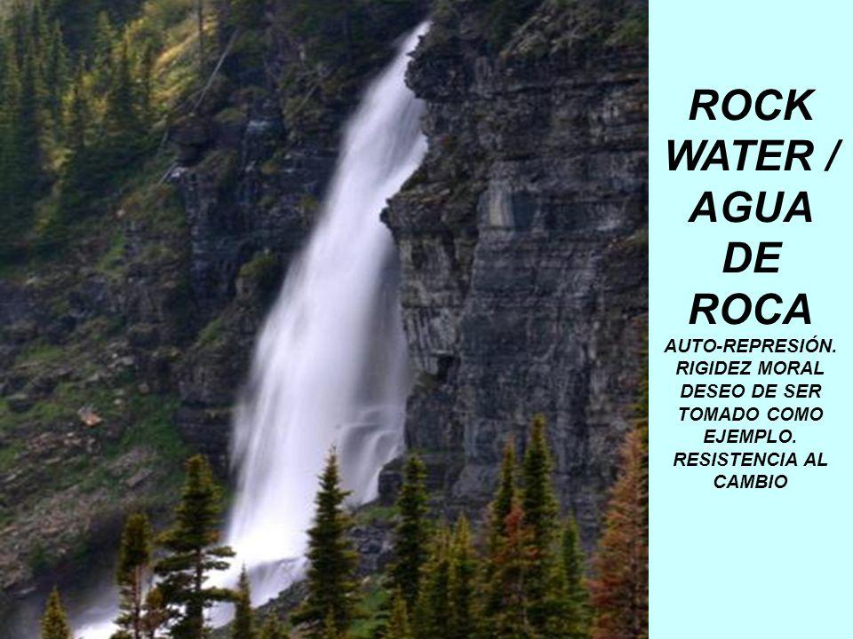 ROCK WATER / AGUA DE ROCA AUTO-REPRESIÓN