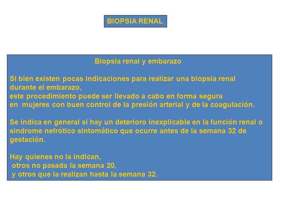 Biopsia renal y embarazo