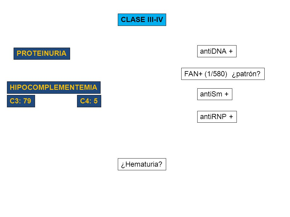 CLASE III-IV antiDNA + PROTEINURIA. FAN+ (1/580) ¿patrón HIPOCOMPLEMENTEMIA. antiSm + C3: 79.