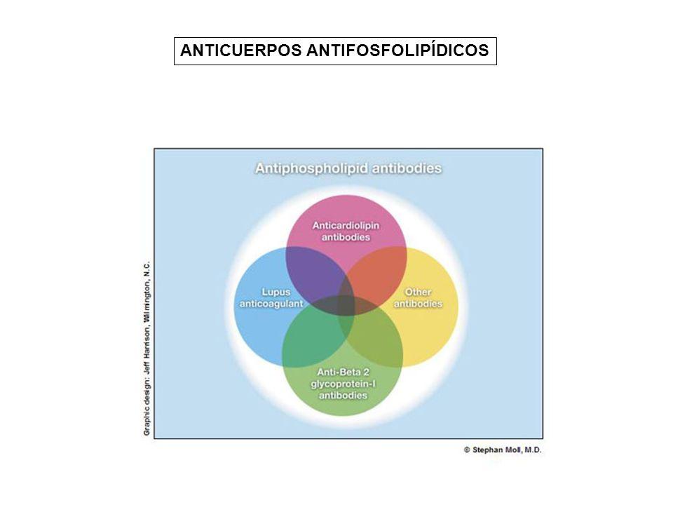 ANTICUERPOS ANTIFOSFOLIPÍDICOS