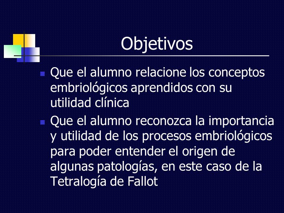 Objetivos Que el alumno relacione los conceptos embriológicos aprendidos con su utilidad clínica.