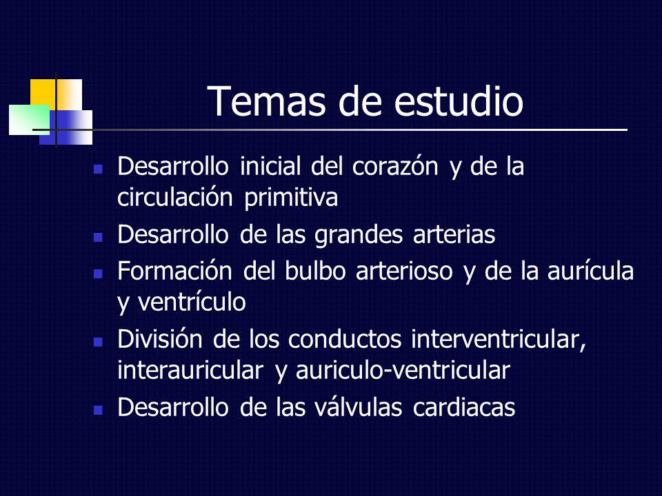 Temas de estudio Desarrollo inicial del corazón y de la circulación primitiva. Desarrollo de las grandes arterias.