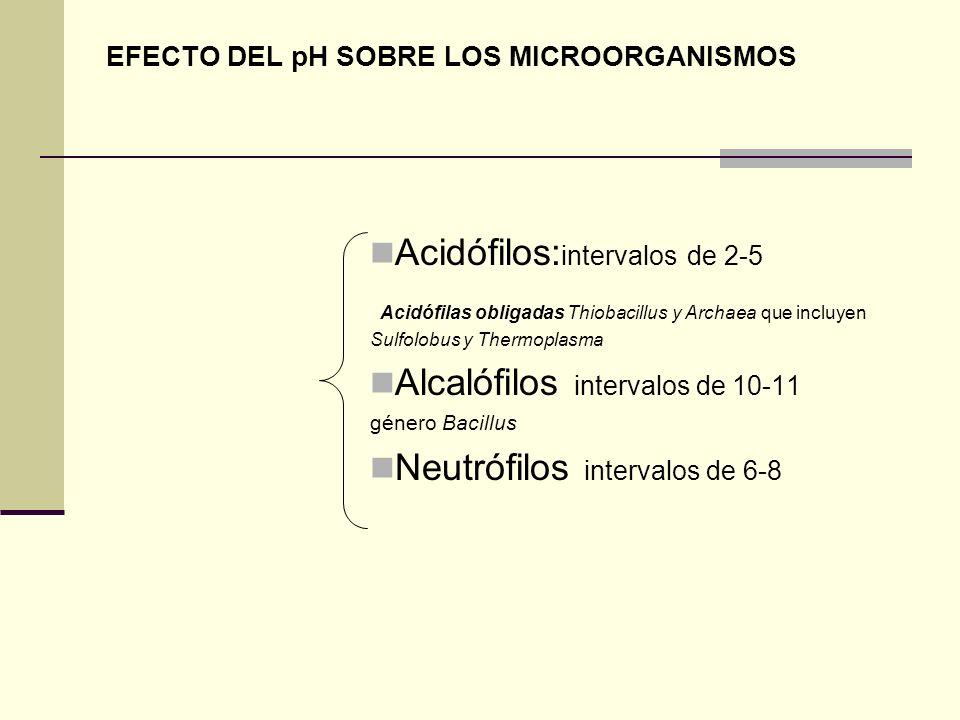 EFECTO DEL pH SOBRE LOS MICROORGANISMOS