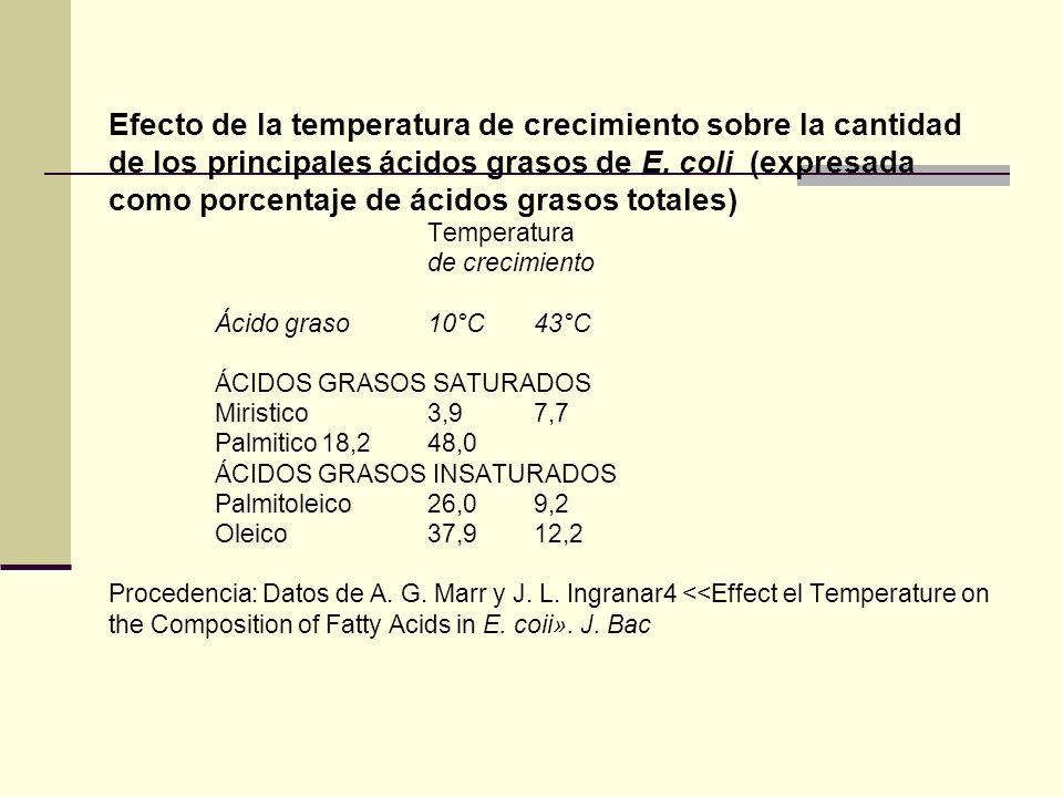 Efecto de la temperatura de crecimiento sobre la cantidad de los principales ácidos grasos de E.