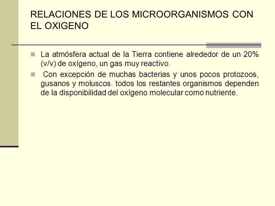 RELACIONES DE LOS MICROORGANISMOS CON EL OXIGENO