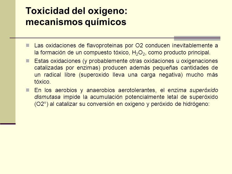 Toxicidad del oxigeno: mecanismos químicos