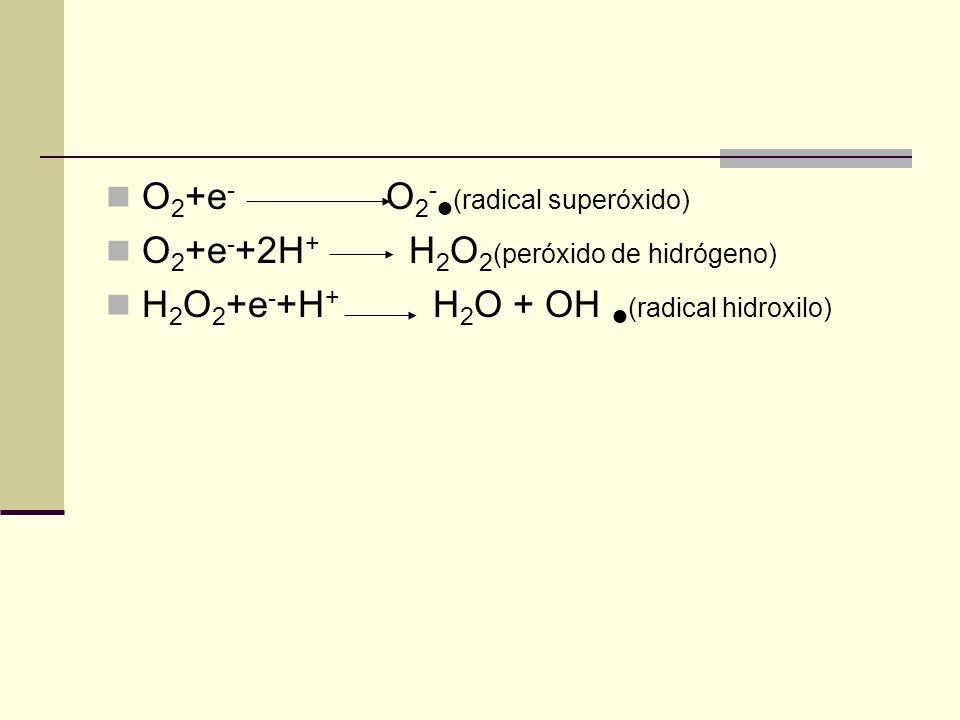 O2+e- O2-(radical superóxido)