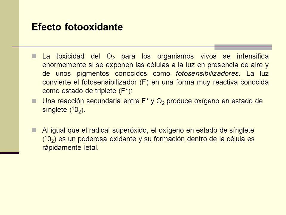 Efecto fotooxidante