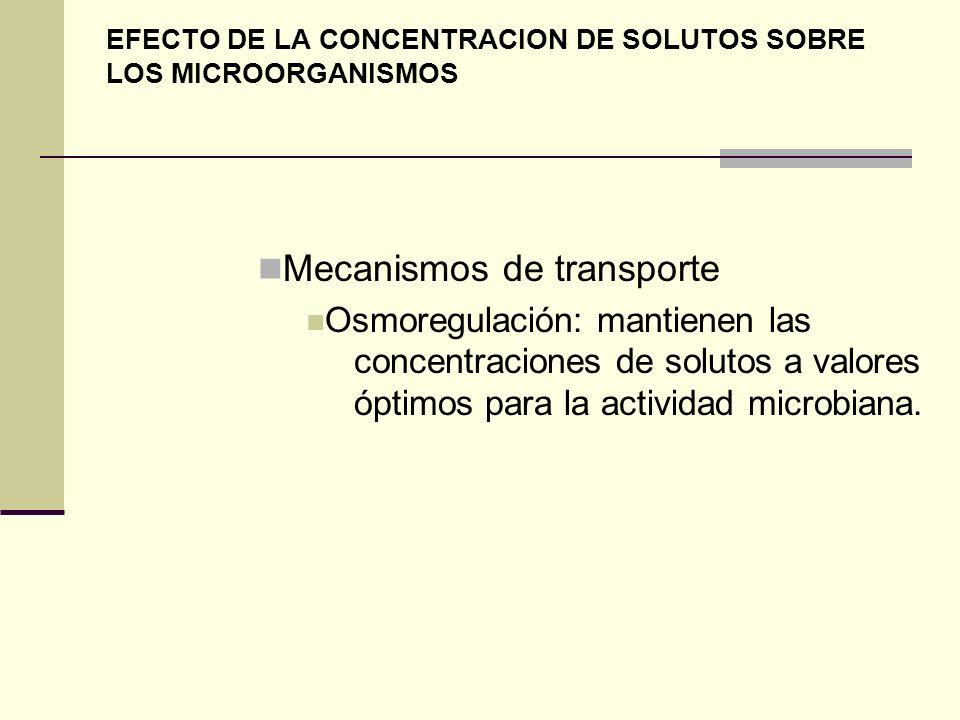 EFECTO DE LA CONCENTRACION DE SOLUTOS SOBRE LOS MICROORGANISMOS