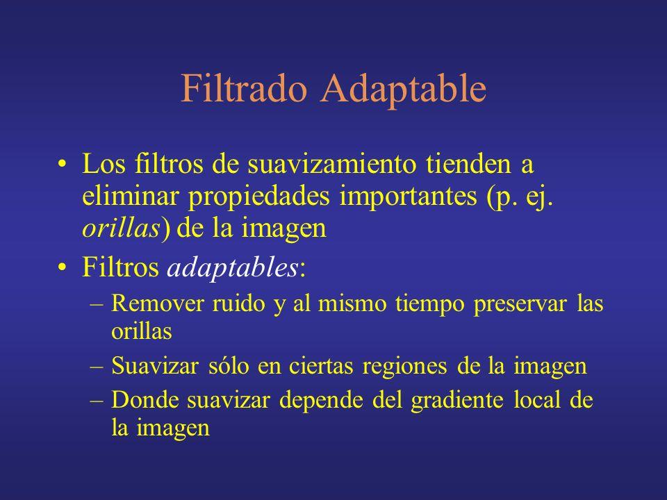 Filtrado Adaptable Los filtros de suavizamiento tienden a eliminar propiedades importantes (p. ej. orillas) de la imagen.