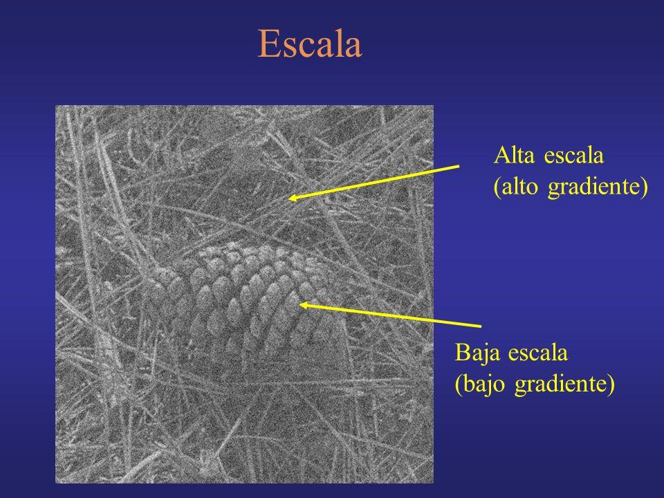 Escala Alta escala (alto gradiente) Baja escala (bajo gradiente)