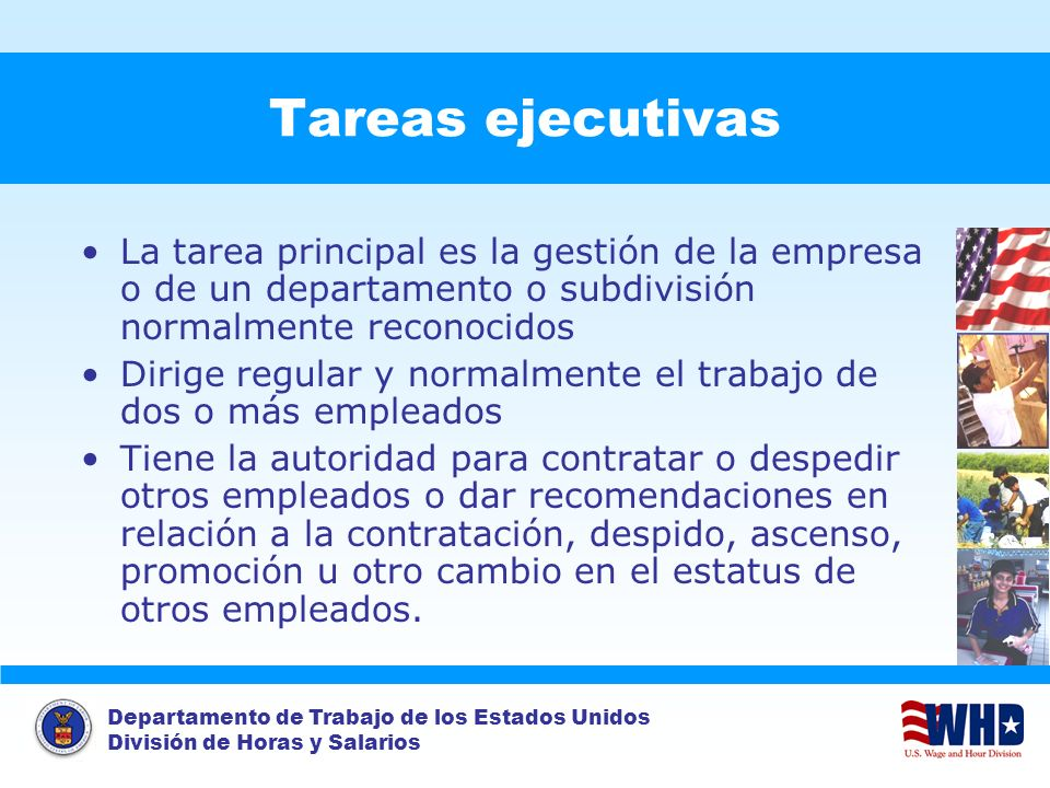 Tareas ejecutivas La tarea principal es la gestión de la empresa o de un departamento o subdivisión normalmente reconocidos.