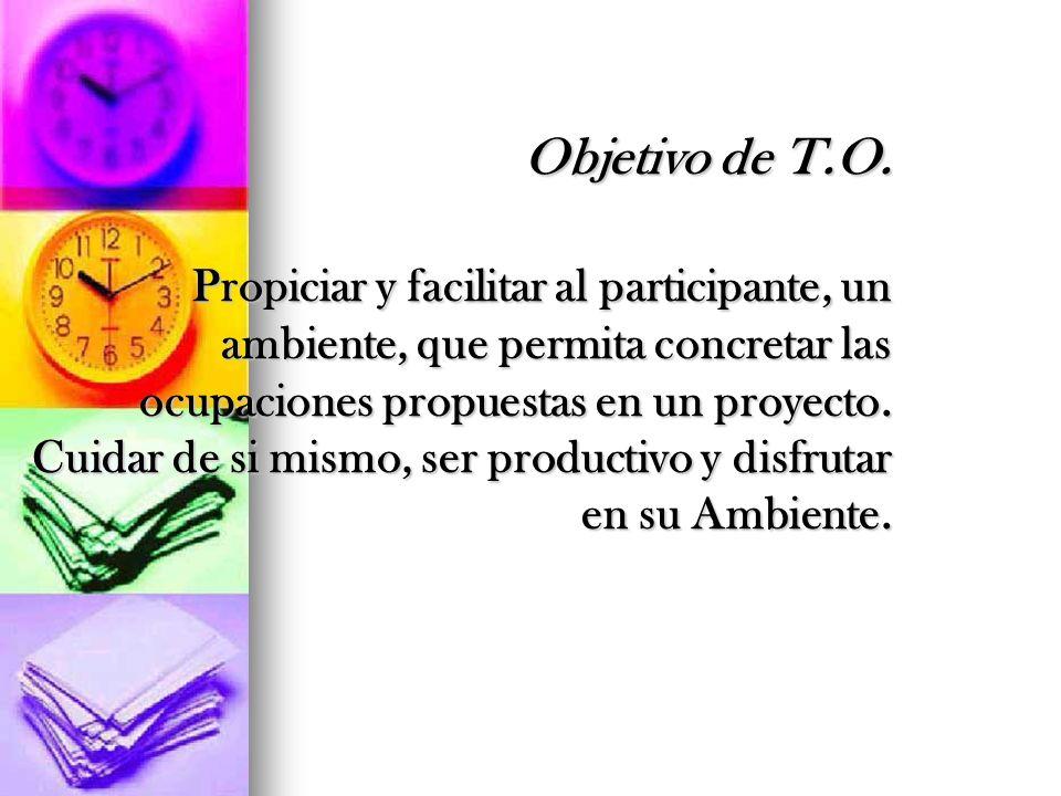Objetivo de T.O. Propiciar y facilitar al participante, un ambiente, que permita concretar las ocupaciones propuestas en un proyecto. Cuidar de si mismo, ser productivo y disfrutar en su Ambiente.
