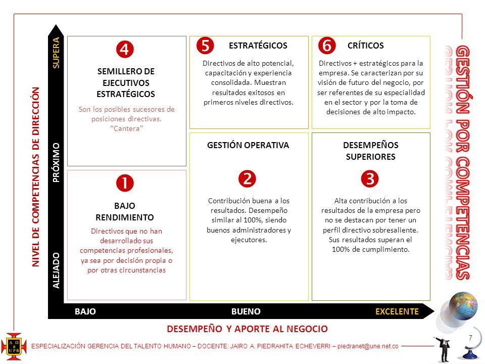 NIVEL DE COMPETENCIAS DE DIRECCIÓN DESEMPEÑO Y APORTE AL NEGOCIO