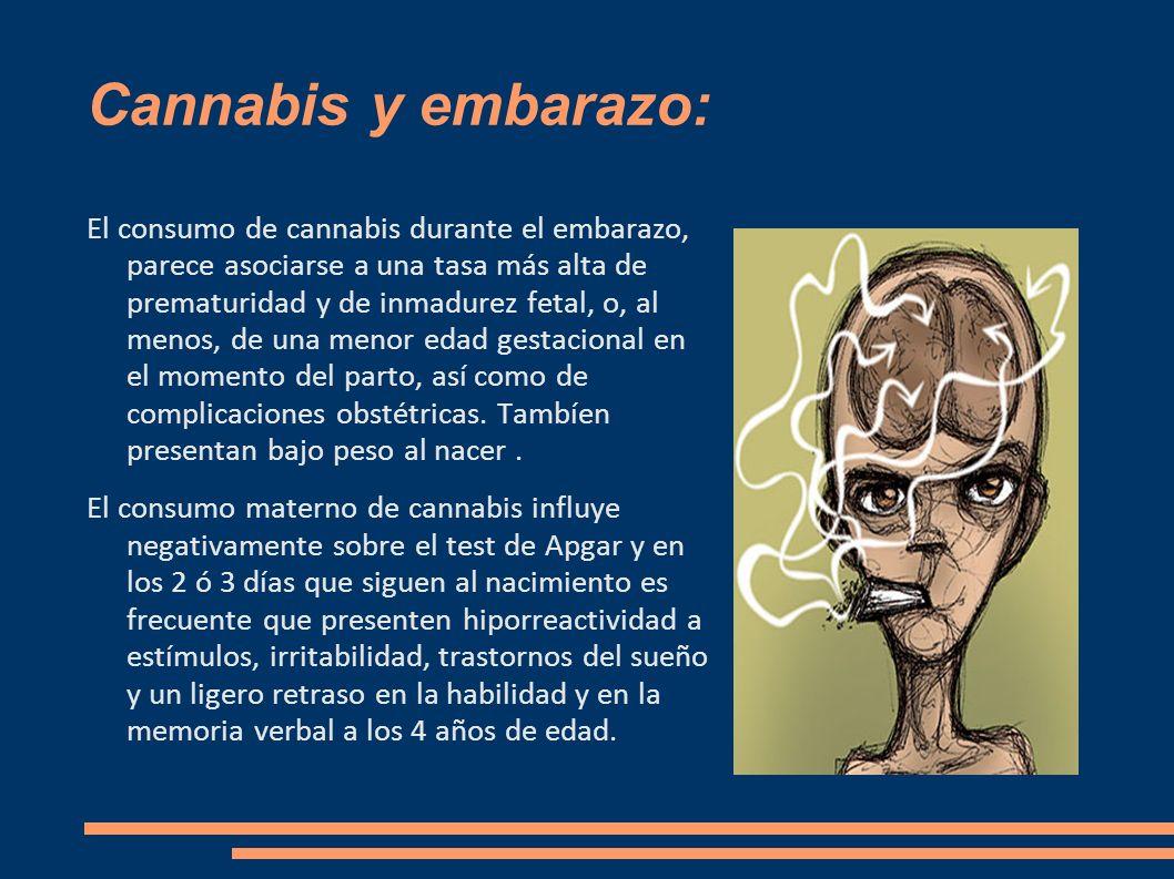 Cannabis y embarazo: