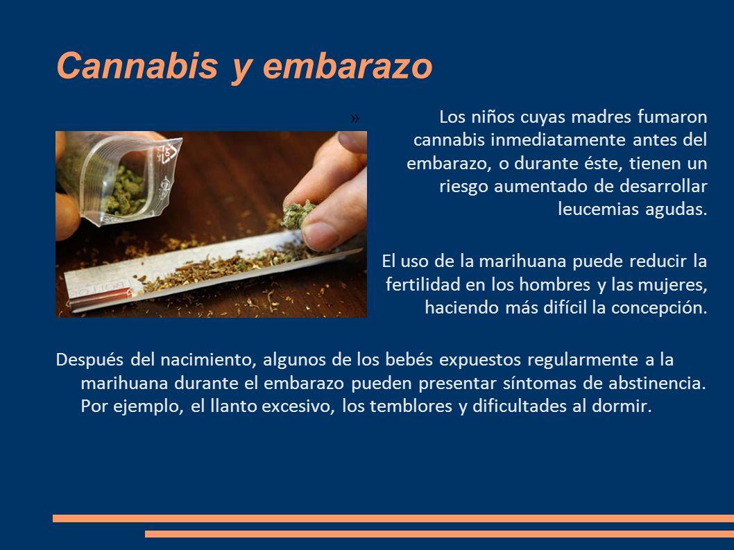 Cannabis y embarazo