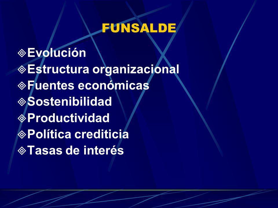 FUNSALDE Evolución. Estructura organizacional. Fuentes económicas. Sostenibilidad. Productividad.