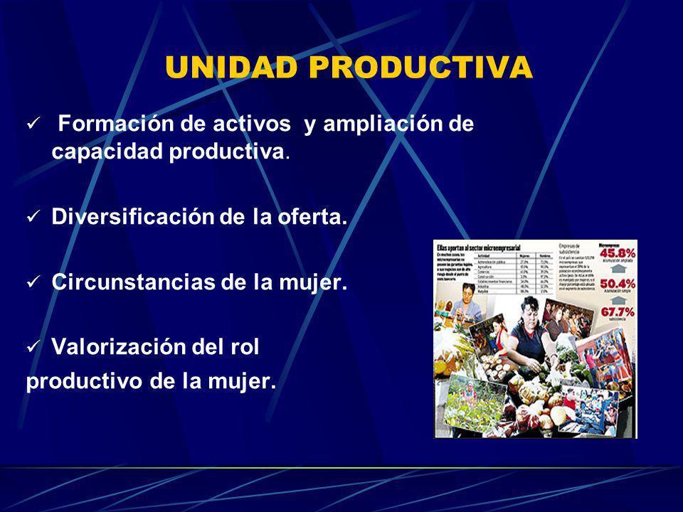 UNIDAD PRODUCTIVA Formación de activos y ampliación de capacidad productiva. Diversificación de la oferta.