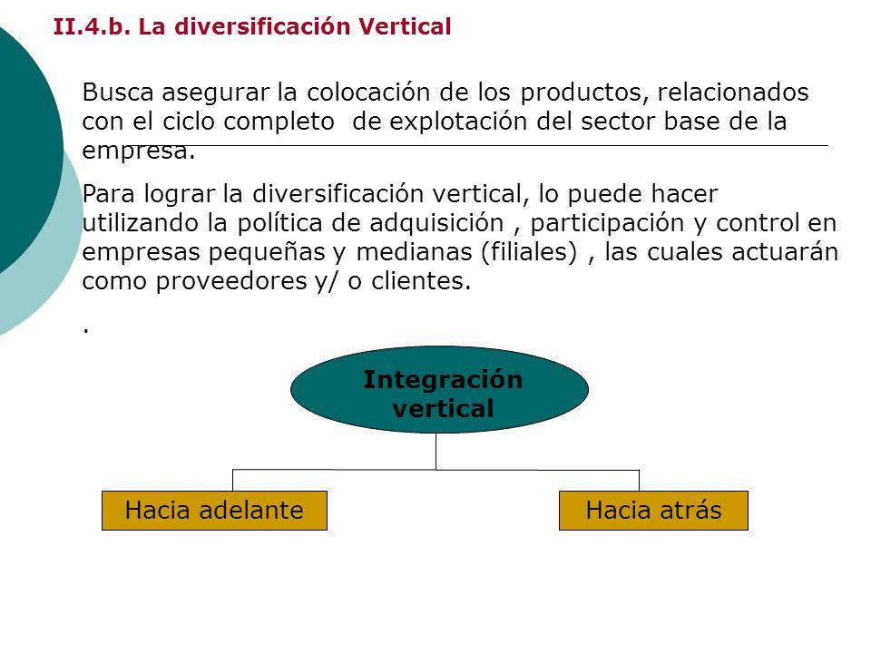 II.4.b. La diversificación Vertical