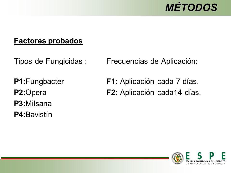 MÉTODOS Factores probados