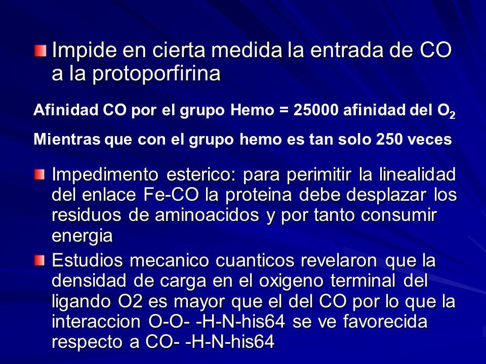 Impide en cierta medida la entrada de CO a la protoporfirina
