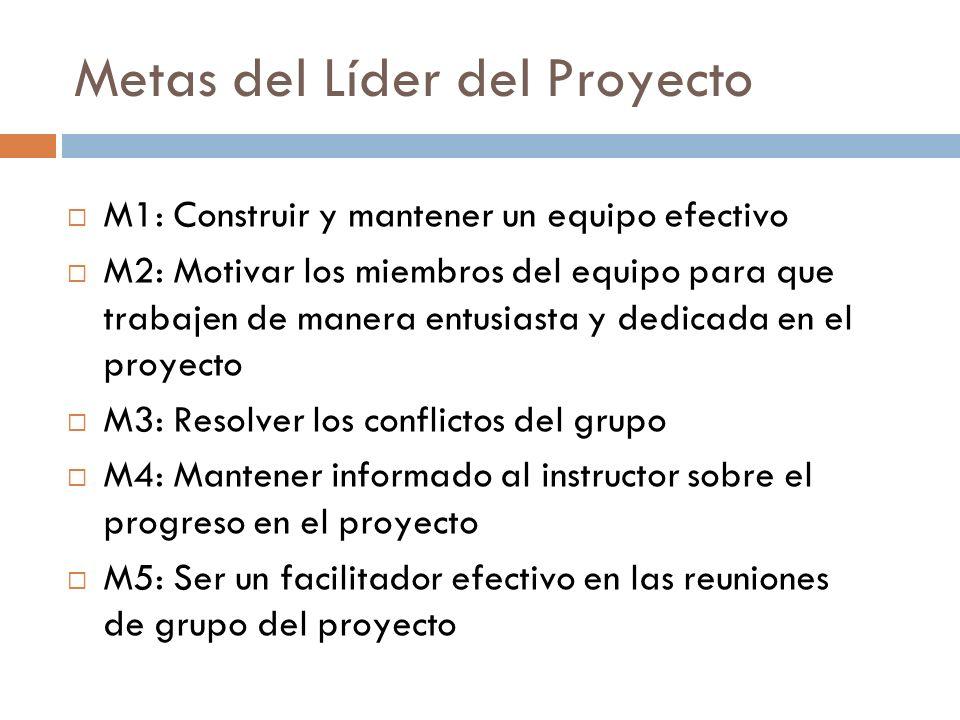 Metas del Líder del Proyecto