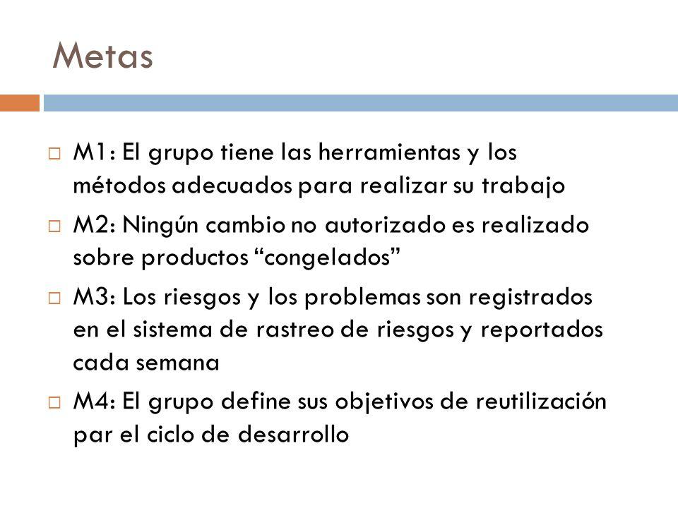 Metas M1: El grupo tiene las herramientas y los métodos adecuados para realizar su trabajo.