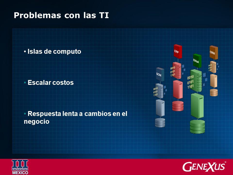 Problemas con las TI Islas de computo Escalar costos