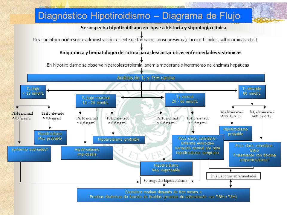 Se sospecha hipotiroidismo en base a historia y signología clínica