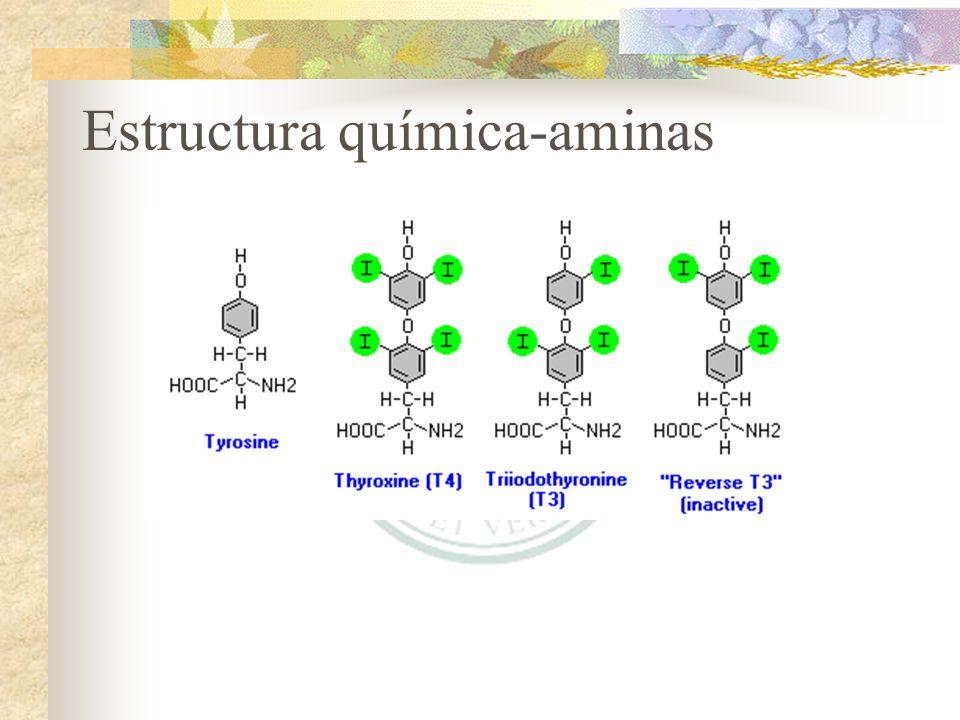 Estructura química-aminas