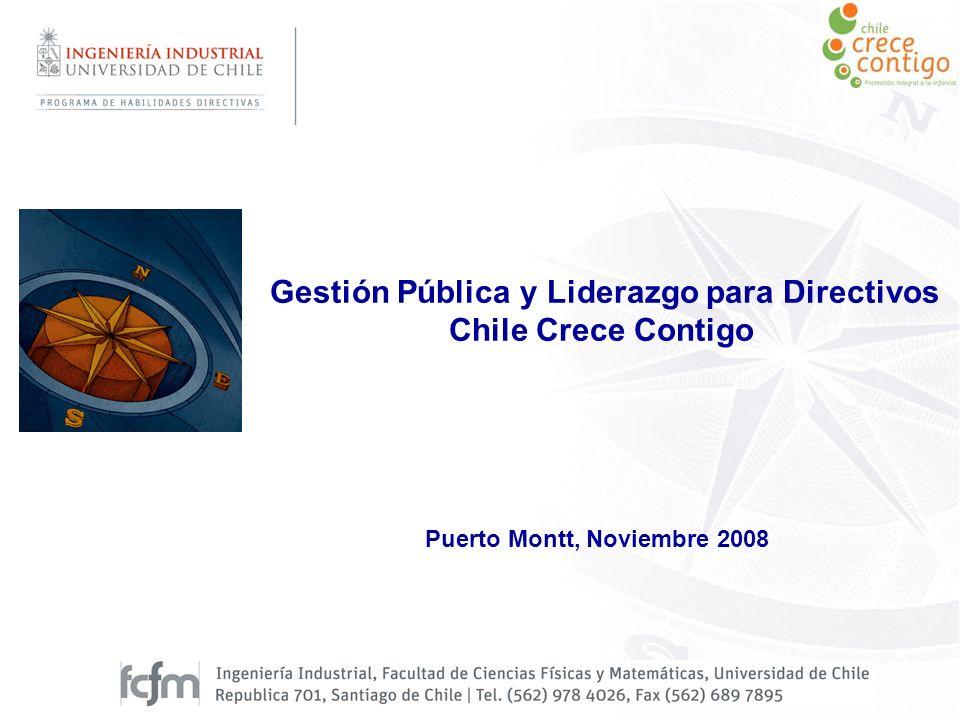 Gestión Pública y Liderazgo para Directivos Chile Crece Contigo