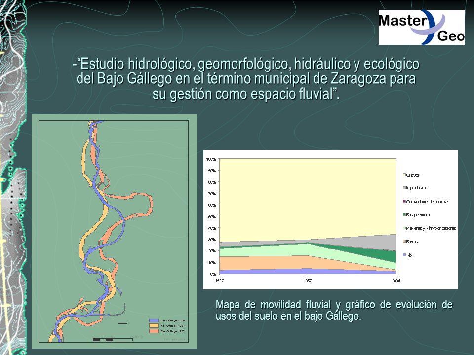 - Estudio hidrológico, geomorfológico, hidráulico y ecológico del Bajo Gállego en el término municipal de Zaragoza para su gestión como espacio fluvial .