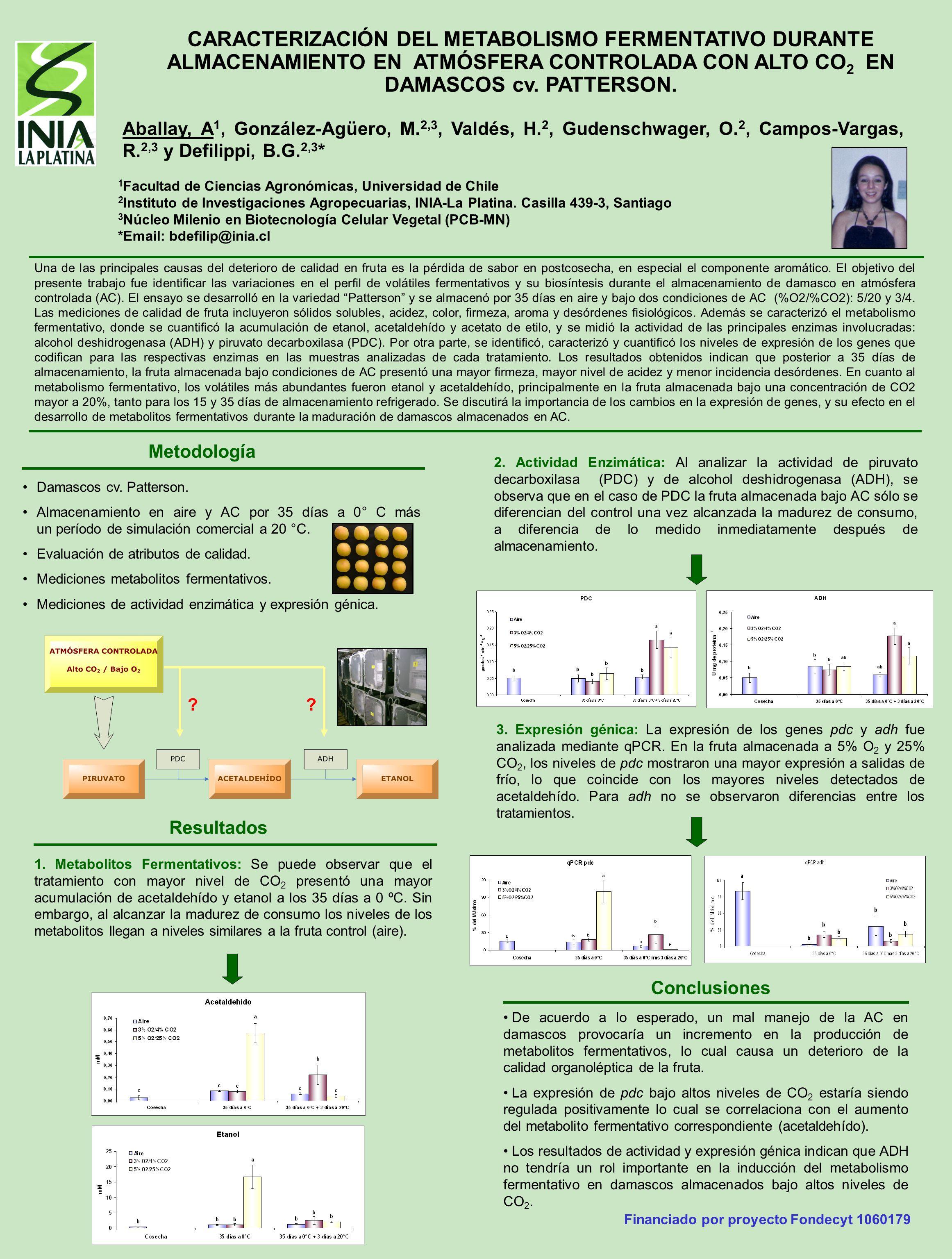 CARACTERIZACIÓN DEL METABOLISMO FERMENTATIVO DURANTE ALMACENAMIENTO EN ATMÓSFERA CONTROLADA CON ALTO CO2 EN DAMASCOS cv. PATTERSON.