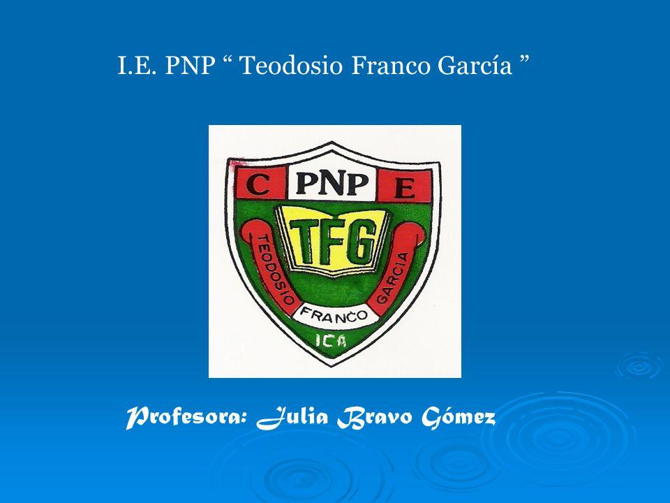 I.E. PNP Teodosio Franco García
