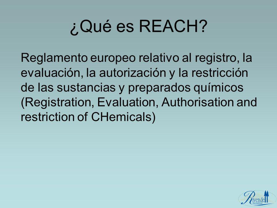 ¿Qué es REACH