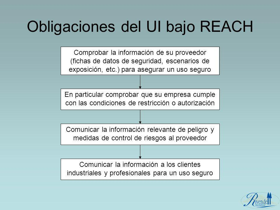 Obligaciones del UI bajo REACH