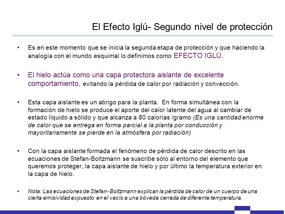 El Efecto Iglú- Segundo nivel de protección