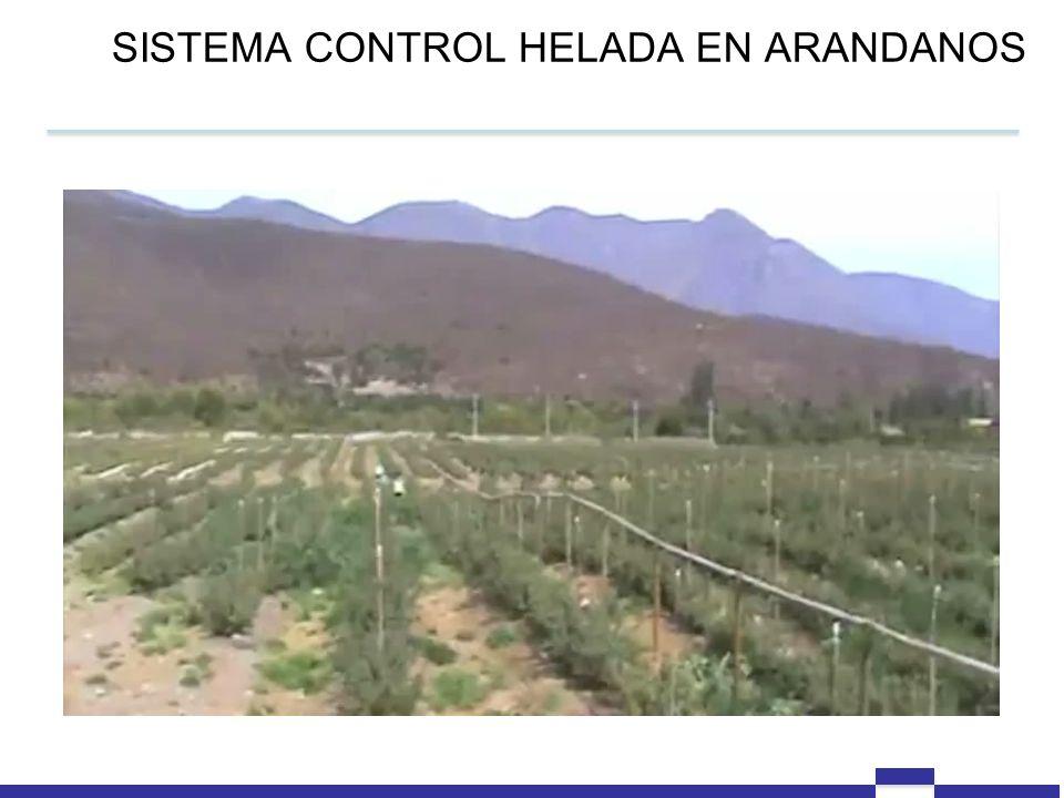 SISTEMA CONTROL HELADA EN ARANDANOS