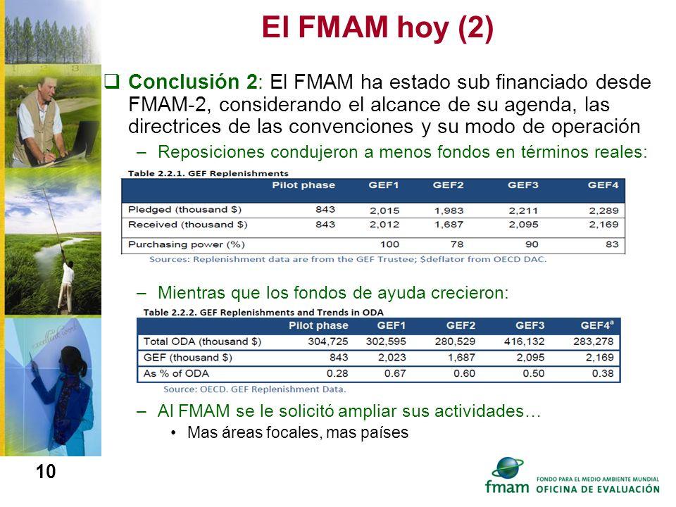 El FMAM hoy (2)