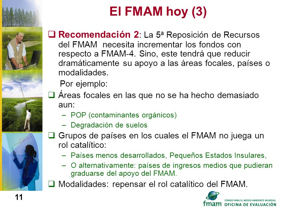 El FMAM hoy (3)