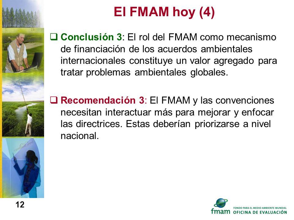El FMAM hoy (4)