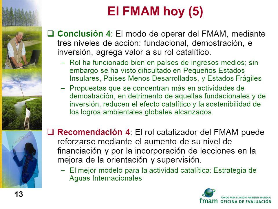 El FMAM hoy (5)