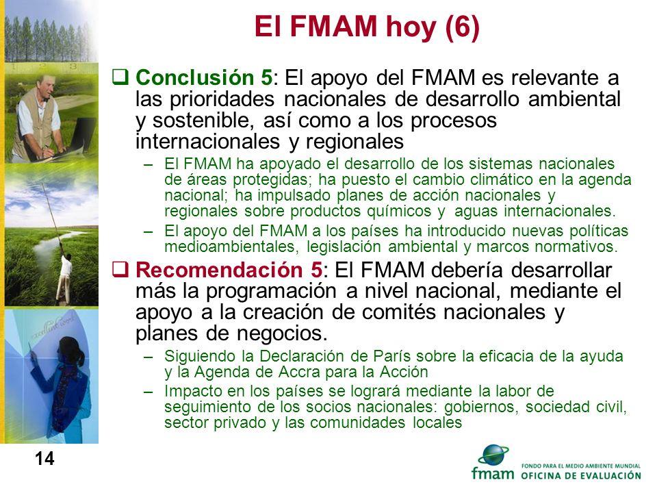El FMAM hoy (6)