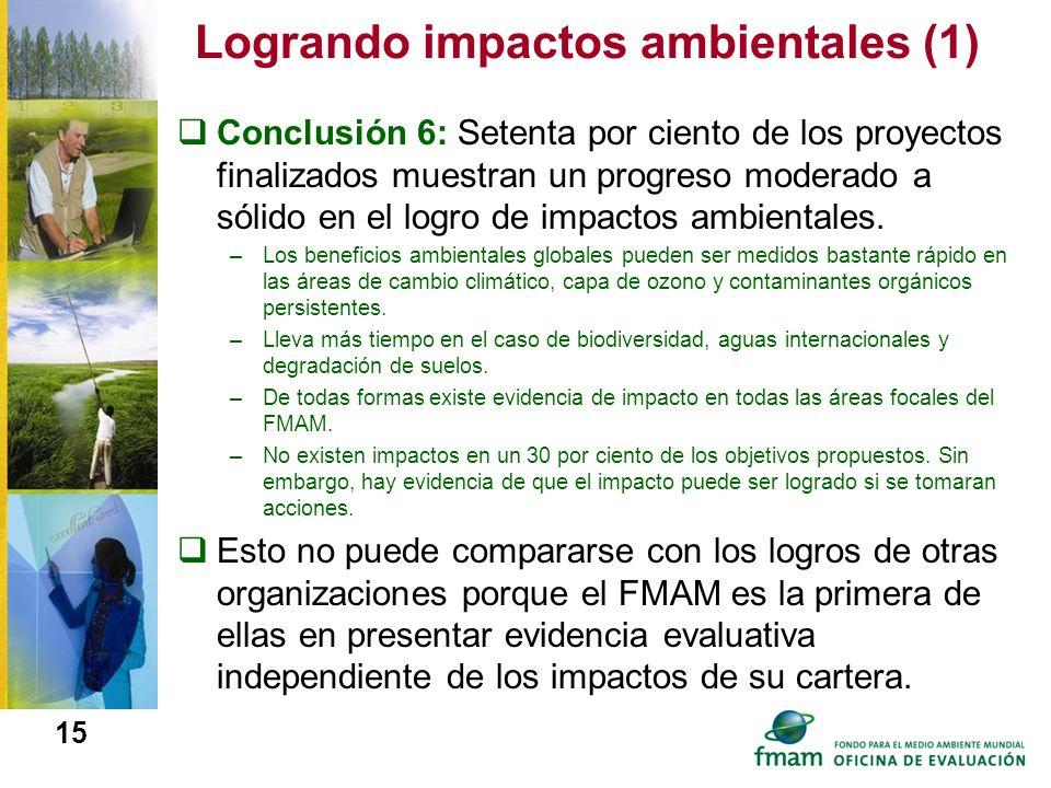 Logrando impactos ambientales (1)